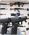 Gun Control Fear
